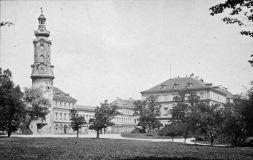 Stadtschloss und Reithauswiese