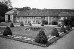 Orangerie, Belvedere